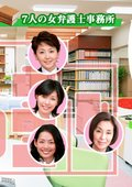 7个女律师2 海报