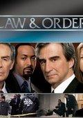 法律与秩序 第十七季 海报